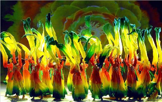 第31届中国洛阳牡丹文化节在洛阳开幕