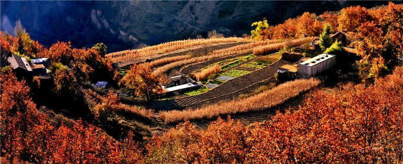 四川省金川县观音桥街道风景图