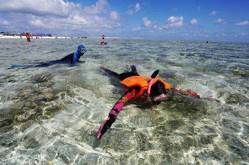 港媒:西沙群岛越来越受内地游客欢迎 成旅游新热点