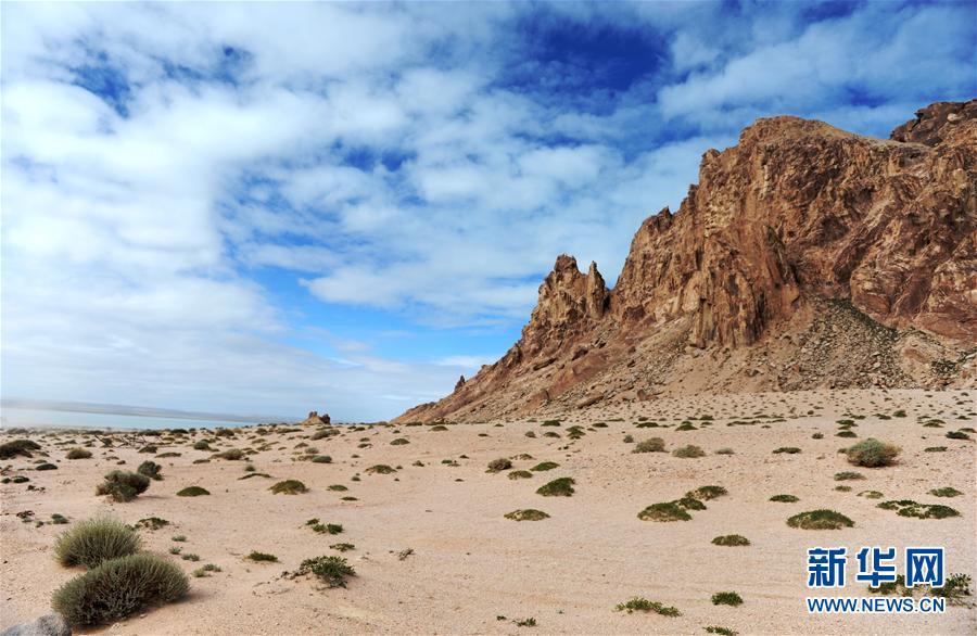 新疆阿尔金山保护区抓获非法入区人员10名 案件正处理中